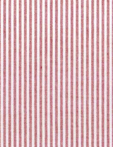 Oxford Stripe Red Fabric